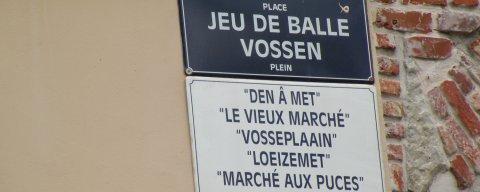 Heerlijk Brussel bij B&B living in Brûsel